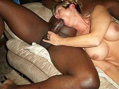 White Women Suck Black Penis Pics